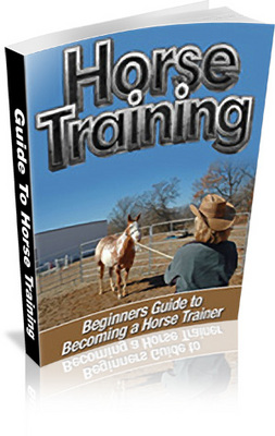 Product picture Secrets to Becoming A Horse Trainer! ***WITH PLR RIGHTS***